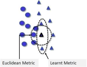 MetricLearningAmp